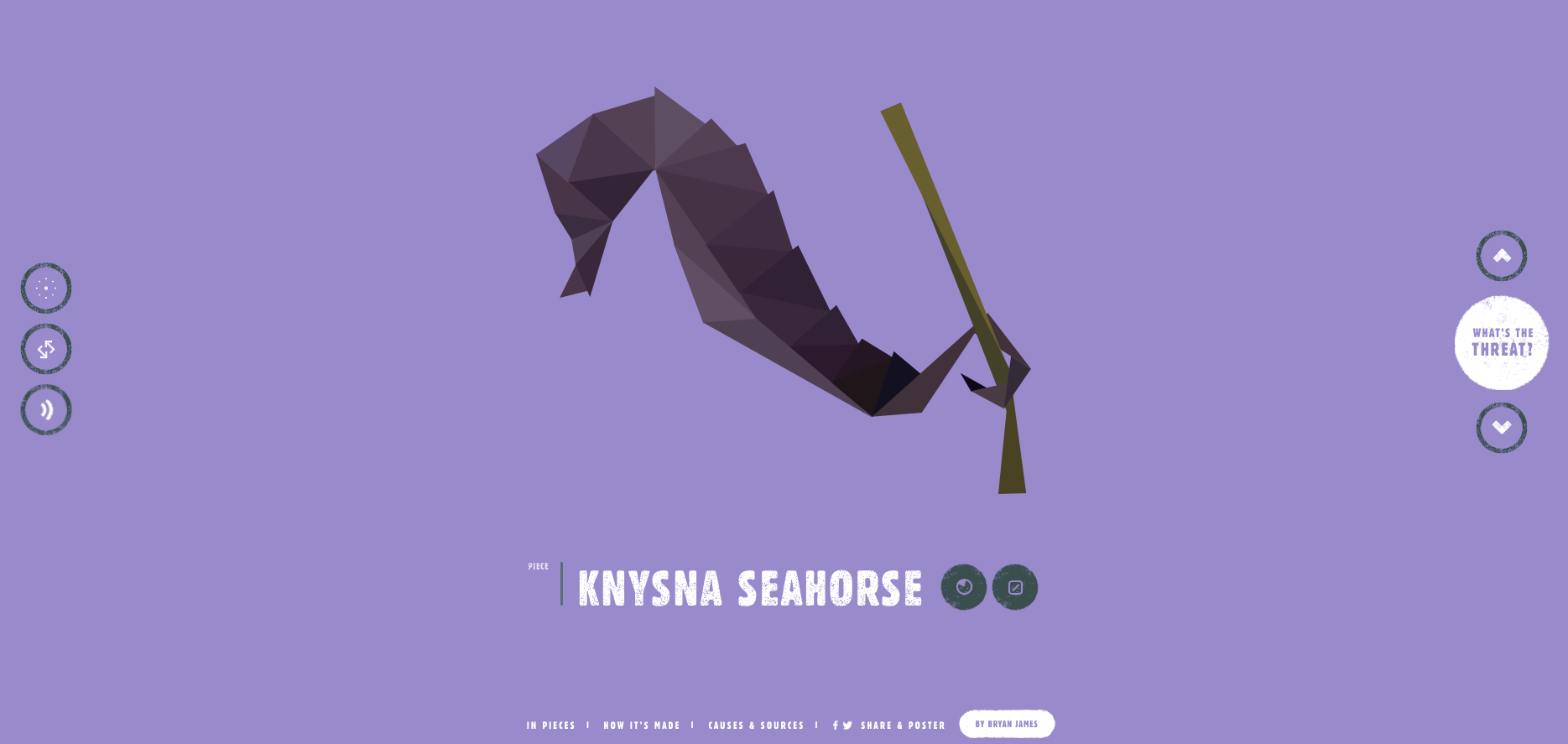 screenshot of Knysna Seahorse website